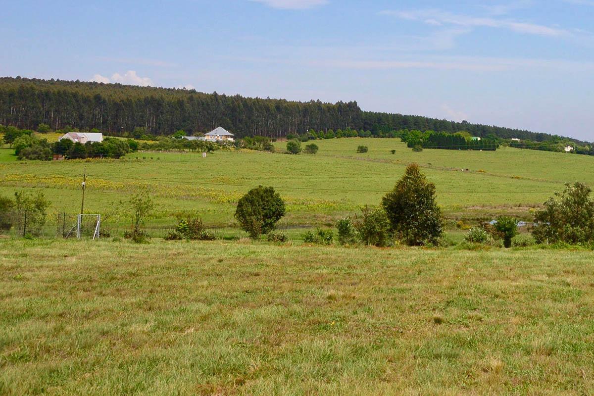 prime-plot-land-property-sales-garlington-estate-development-farm-lifestyle-midlands-meander