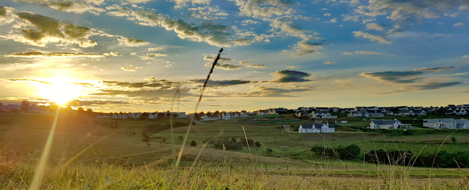 horses-garlington-estate-kzn-midlands-housing-countryside-country-farm-secure-hills