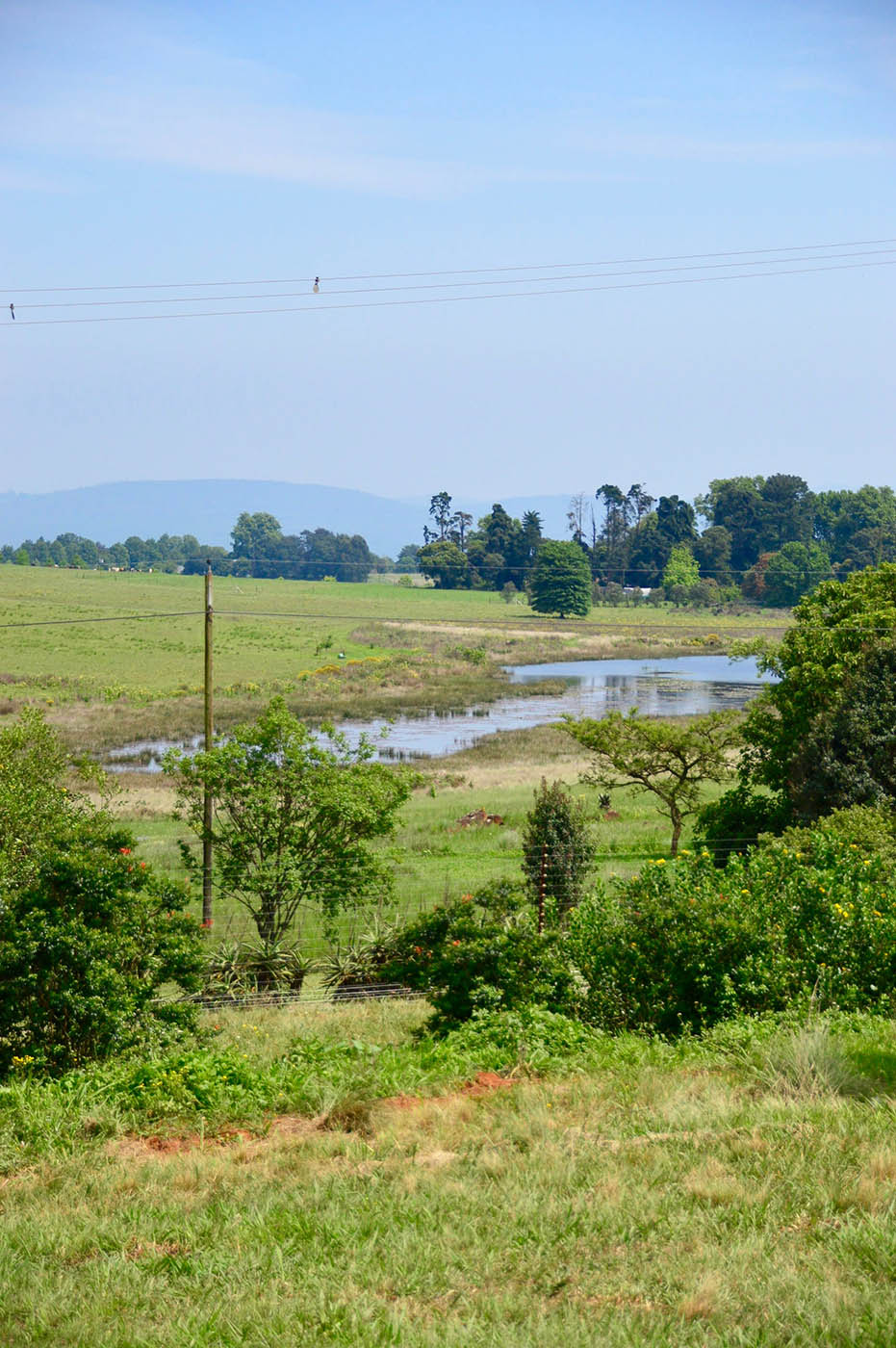 prime-plot-land-garlington-estate-hilton-kzn-midlands-meander-property-sales-Wedgewood-Wetland-luxury